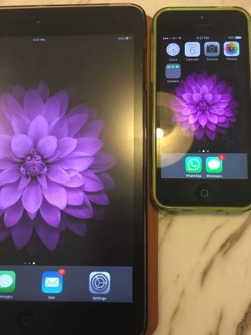 Left screen has matt protector; Right screen doesn't.